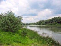 与一条镇静河的夏天风景 免版税图库摄影