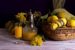 与一条黄色围巾、含羞草分支和汁液的静物画 库存照片