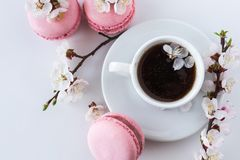 与一杯咖啡的桃红色蛋白杏仁饼干和白花分支  免版税图库摄影
