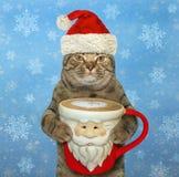 与一杯圣诞老人项目咖啡的猫2 免版税库存照片