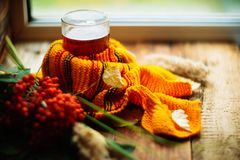 与一杯茶的秋天背景与黄色叶子的和温暖在老委员会的被编织的围巾与拷贝的窗口背景的 图库摄影