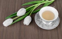 茶和白色郁金香 库存照片