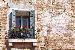 与一株大竺葵的一个窗口在砖门面 免版税图库摄影