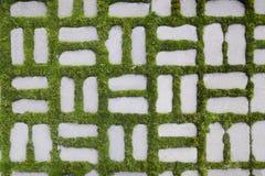 与一棵发芽的草的样式我 免版税库存图片