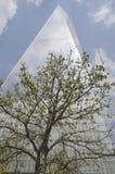 与一棵树的自由塔在前面, NYC 库存照片
