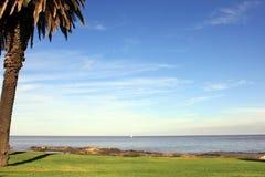 与一棵棕榈的风景在海洋附近 图库摄影