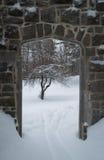 与一棵苹果树的哥特式石门方式在冬天 免版税库存图片