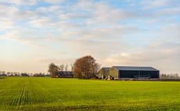 与一片最近被播种的庄稼的农村风景 免版税库存照片