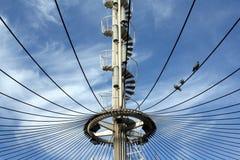 与一部螺旋形楼梯的一个缆绳被停留的结构和在钢缆的三只鸽子 库存照片