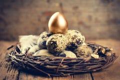 与一金子的鹌鹑蛋 图库摄影