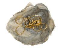 与一颗珍珠的金黄项链在oystershell 库存照片