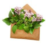 与丁香的被打开的工艺纸信封开花花束 免版税库存照片
