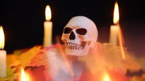 与万圣夜天头骨animationFootage的万圣夜糖果有蜡烛背景 影视素材