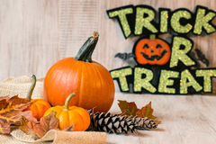 与万圣夜把戏或款待标志的秋天金瓜 免版税库存照片