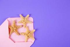 与三个海星的桃红色信封在色的紫色背景 库存图片