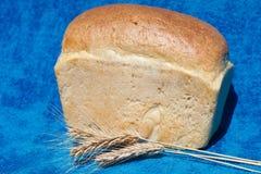 与三个耳朵的新鲜面包 免版税图库摄影