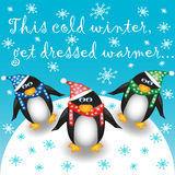 与三只企鹅的明信片 库存照片