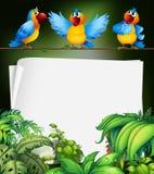 与三只鹦鹉的纸设计在分支 向量例证