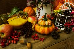 与三叶草的秋天装饰在花瓶,伏牛花,南瓜,关闭 免版税库存图片