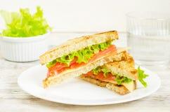 与三文鱼、乳酪和沙拉的Panini三明治 免版税图库摄影