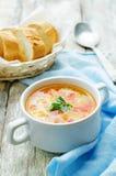与三文鱼、土豆和小米的汤 免版税库存图片