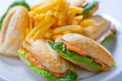 与三文鱼、蕃茄、乳酪和金黄炸薯条土豆的三明治 免版税库存图片
