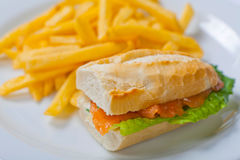 与三文鱼、蕃茄、乳酪和金黄炸薯条土豆的三明治 免版税库存照片