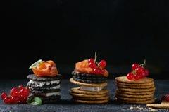 与三文鱼和莓果的黑薄脆饼干 免版税库存图片