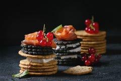 与三文鱼和莓果的黑薄脆饼干 免版税图库摄影