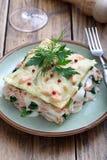 与三文鱼和菠菜的意大利烤宽面条 图库摄影