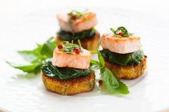 与三文鱼的开胃菜 库存图片