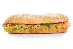 与三文鱼鱼侧向isol的长方形宝石次级三明治整个五谷 库存图片