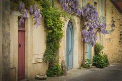 与上升的紫藤的老木落地窗在墙壁上 免版税库存图片