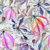 与上升的美丽的gloriosa百合花在灰色背景离开 无缝花卉的模式 多孔黏土更正高绘画photoshop非常质量扫描水彩 向量例证