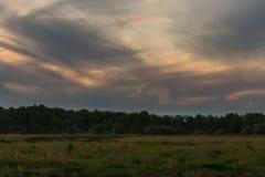 与下午云彩的领域 库存图片
