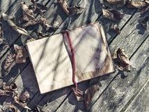 与下落的叶子的旧书在木板条 库存照片
