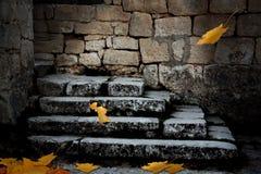 与下落的叶子的老石楼梯 库存照片