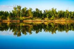 与下落的树的河沿 免版税库存图片
