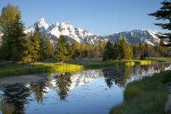 与下面池塘的全部Tetons山 免版税库存照片