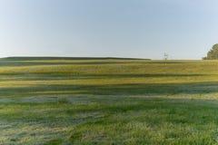 与不可思议的阳光,阳光,轻和绿草,草甸第14部分的自然 免版税库存图片