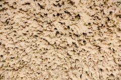 与不规则的光滑的形状的泥棕色纹理 免版税库存照片