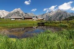 与与一个湖的山风景前景的 alpes奥地利山牧场地提洛尔 库存照片