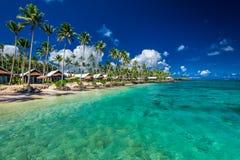 与与可可椰子树和别墅的热带海滩在萨摩亚 免版税库存照片