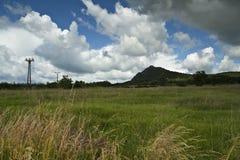 与与山的草地在距离 免版税库存照片