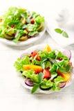 与与石榴种子的红色和黄色新鲜的蕃茄沙拉 免版税库存图片
