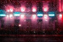 与丛的汽车玻璃雨 免版税图库摄影