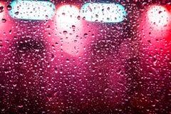 与丛的汽车玻璃雨 免版税库存照片