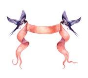 与丝带横幅的飞行的燕子 图库摄影