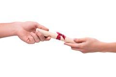 给与丝带的手滚动的羊皮纸 免版税库存照片