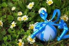 与丝带的蓝色复活节彩蛋在雏菊草甸 免版税库存照片